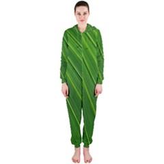 Green Lines Macro Pattern Hooded Jumpsuit (ladies)