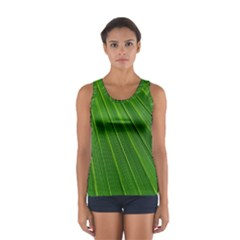 Green Lines Macro Pattern Women s Sport Tank Top