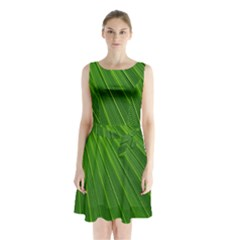 Green Lines Macro Pattern Sleeveless Chiffon Waist Tie Dress
