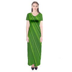 Green Lines Macro Pattern Short Sleeve Maxi Dress
