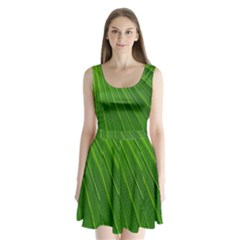 Green Lines Macro Pattern Split Back Mini Dress