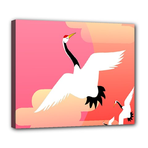 Goose Swan Pink Orange White Animals Fly Deluxe Canvas 24  x 20