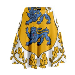 Coat of Arms of Estonia High Waist Skirt