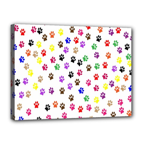 Paw Prints Background Canvas 16  X 12