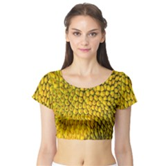 Jack Shell Jack Fruit Close Short Sleeve Crop Top (tight Fit)