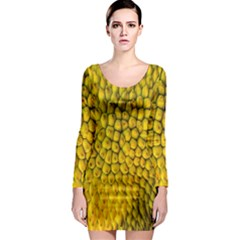 Jack Shell Jack Fruit Close Long Sleeve Bodycon Dress