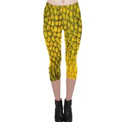 Jack Shell Jack Fruit Close Capri Leggings