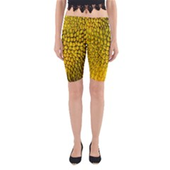 Jack Shell Jack Fruit Close Yoga Cropped Leggings