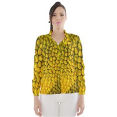 Jack Shell Jack Fruit Close Wind Breaker (women)
