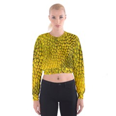 Jack Shell Jack Fruit Close Women s Cropped Sweatshirt