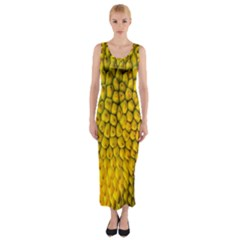 Jack Shell Jack Fruit Close Fitted Maxi Dress