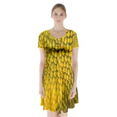 Jack Shell Jack Fruit Close Short Sleeve V-neck Flare Dress