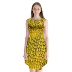 Jack Shell Jack Fruit Close Sleeveless Chiffon Dress