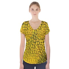 Jack Shell Jack Fruit Close Short Sleeve Front Detail Top