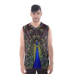 Bird Peacock Display Full Elegant Plumage Men s Basketball Tank Top