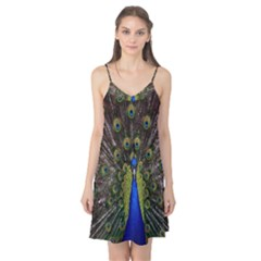Bird Peacock Display Full Elegant Plumage Camis Nightgown