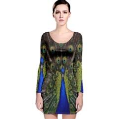 Bird Peacock Display Full Elegant Plumage Long Sleeve Velvet Bodycon Dress