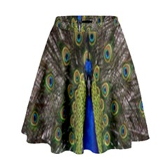 Bird Peacock Display Full Elegant Plumage High Waist Skirt