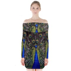 Bird Peacock Display Full Elegant Plumage Long Sleeve Off Shoulder Dress