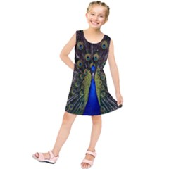 Bird Peacock Display Full Elegant Plumage Kids  Tunic Dress