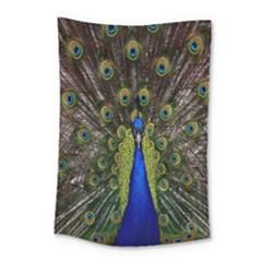 Bird Peacock Display Full Elegant Plumage Small Tapestry