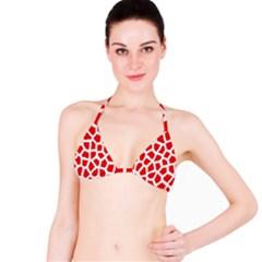 Animal Animalistic Pattern Bikini Top