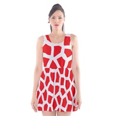 Animal Animalistic Pattern Scoop Neck Skater Dress