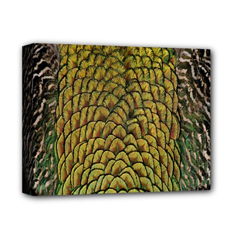 Colorful Iridescent Feather Bird Color Peacock Deluxe Canvas 14  X 11