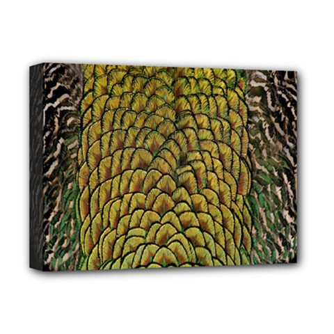 Colorful Iridescent Feather Bird Color Peacock Deluxe Canvas 16  X 12