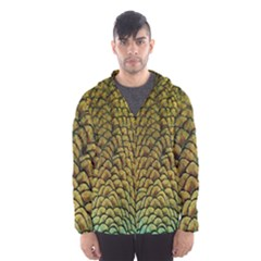 Colorful Iridescent Feather Bird Color Peacock Hooded Wind Breaker (Men)
