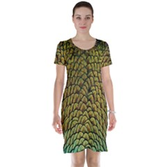 Colorful Iridescent Feather Bird Color Peacock Short Sleeve Nightdress