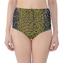 Colorful Iridescent Feather Bird Color Peacock High-Waist Bikini Bottoms