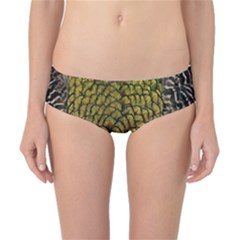 Colorful Iridescent Feather Bird Color Peacock Classic Bikini Bottoms