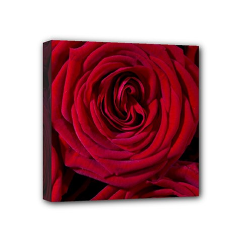 Roses Flowers Red Forest Bloom Mini Canvas 4  X 4