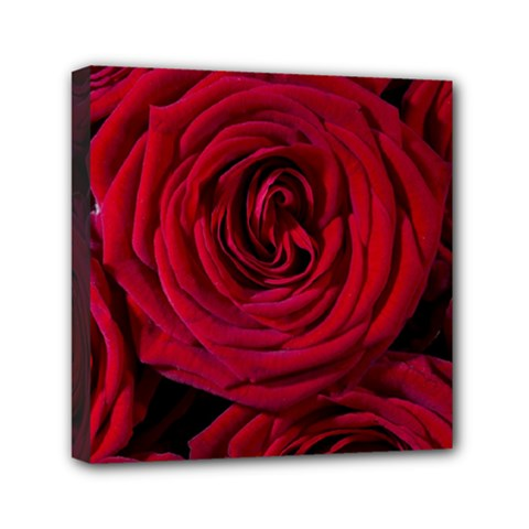 Roses Flowers Red Forest Bloom Mini Canvas 6  X 6