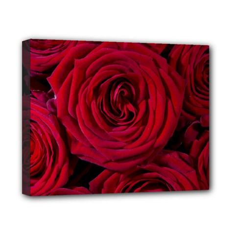 Roses Flowers Red Forest Bloom Canvas 10  x 8