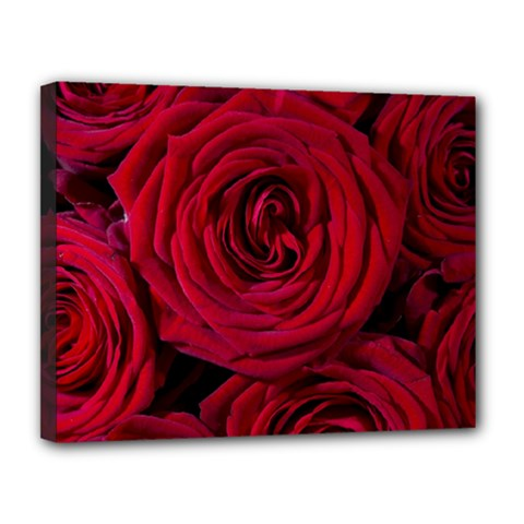 Roses Flowers Red Forest Bloom Canvas 14  X 11