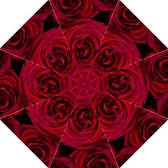 Roses Flowers Red Forest Bloom Folding Umbrellas
