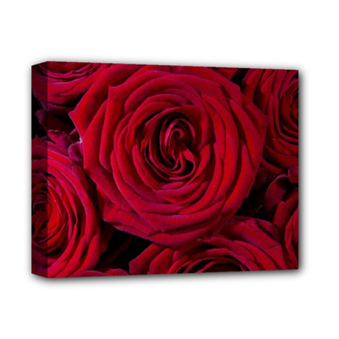 Roses Flowers Red Forest Bloom Deluxe Canvas 14  X 11