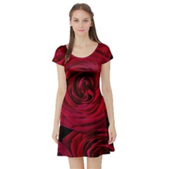 Roses Flowers Red Forest Bloom Short Sleeve Skater Dress