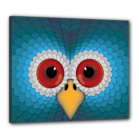 Bird Eyes Abstract Canvas 24  X 20