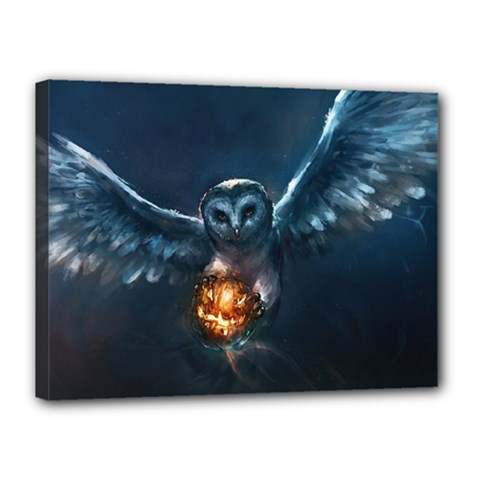 Owl And Fire Ball Canvas 16  x 12