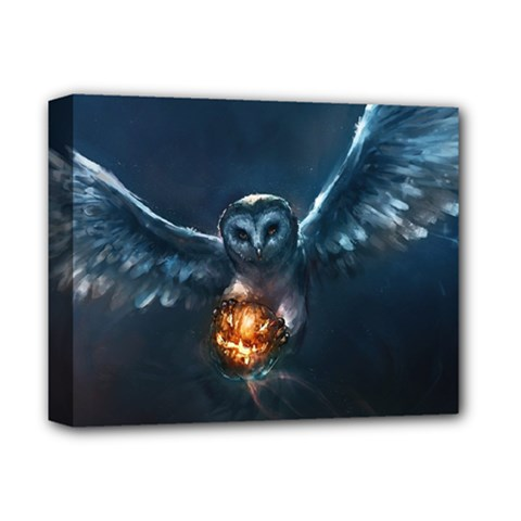Owl And Fire Ball Deluxe Canvas 14  X 11