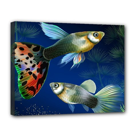Marine Fishes Canvas 14  X 11