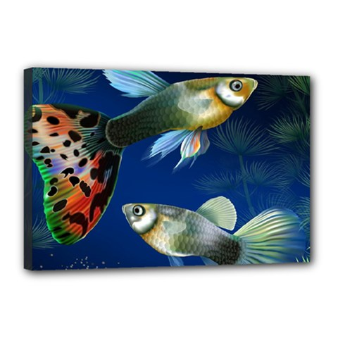 Marine Fishes Canvas 18  X 12