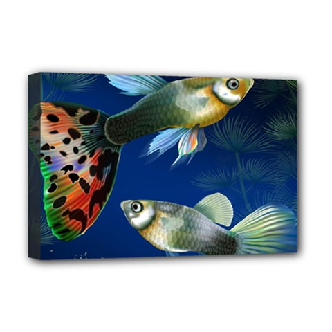 Marine Fishes Deluxe Canvas 18  x 12