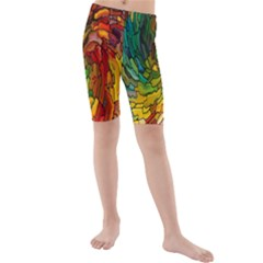 Stained Glass Patterns Colorful Kids  Mid Length Swim Shorts