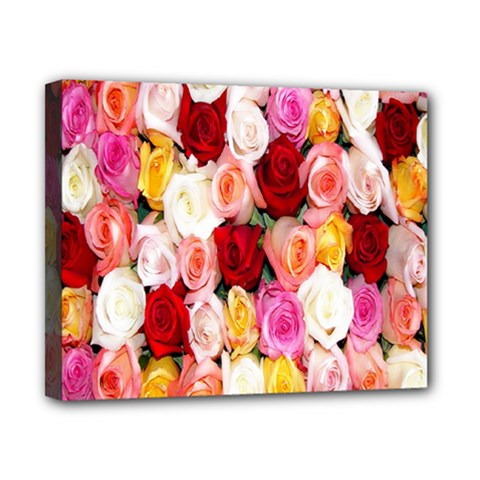 Rose Color Beautiful Flowers Canvas 10  X 8