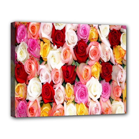 Rose Color Beautiful Flowers Canvas 14  X 11