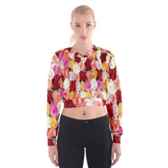 Rose Color Beautiful Flowers Women s Cropped Sweatshirt